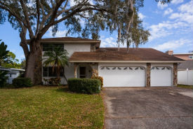 123 Lake Shore Dr E Palm Harbor, FL 34684